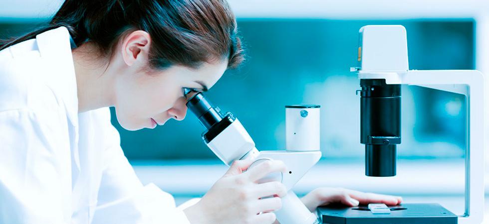 Биопсия почки - как делается, подготовка